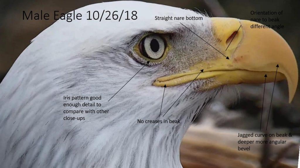 DM2 on October 16, 2018