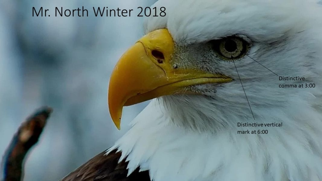 Winter 2018: Mr. North