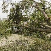 August 13, 2020: Aftermath of the derecho storm, Cedar Rapids. Photo credit Jim Slosiarek/The Gazette