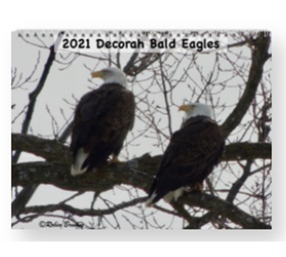 An image of Robin Brumm's 2021 Decorah Eagles calendar