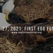 February 27, 2021: First Egg Fundraiser