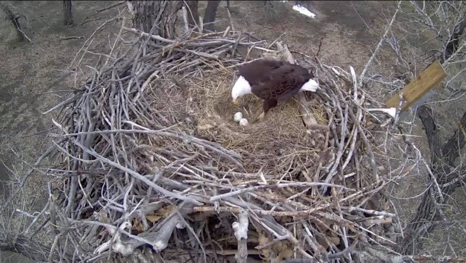 A view from the Fort St. Vrain side cam