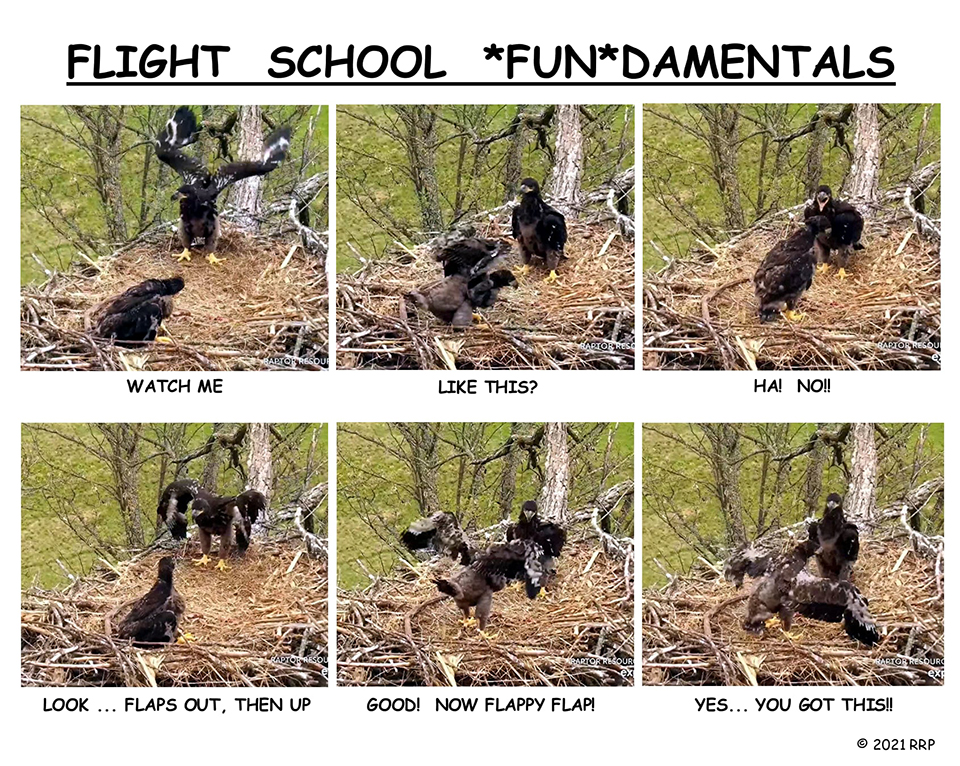 Decorah North: Flight School *Fun*damentals!