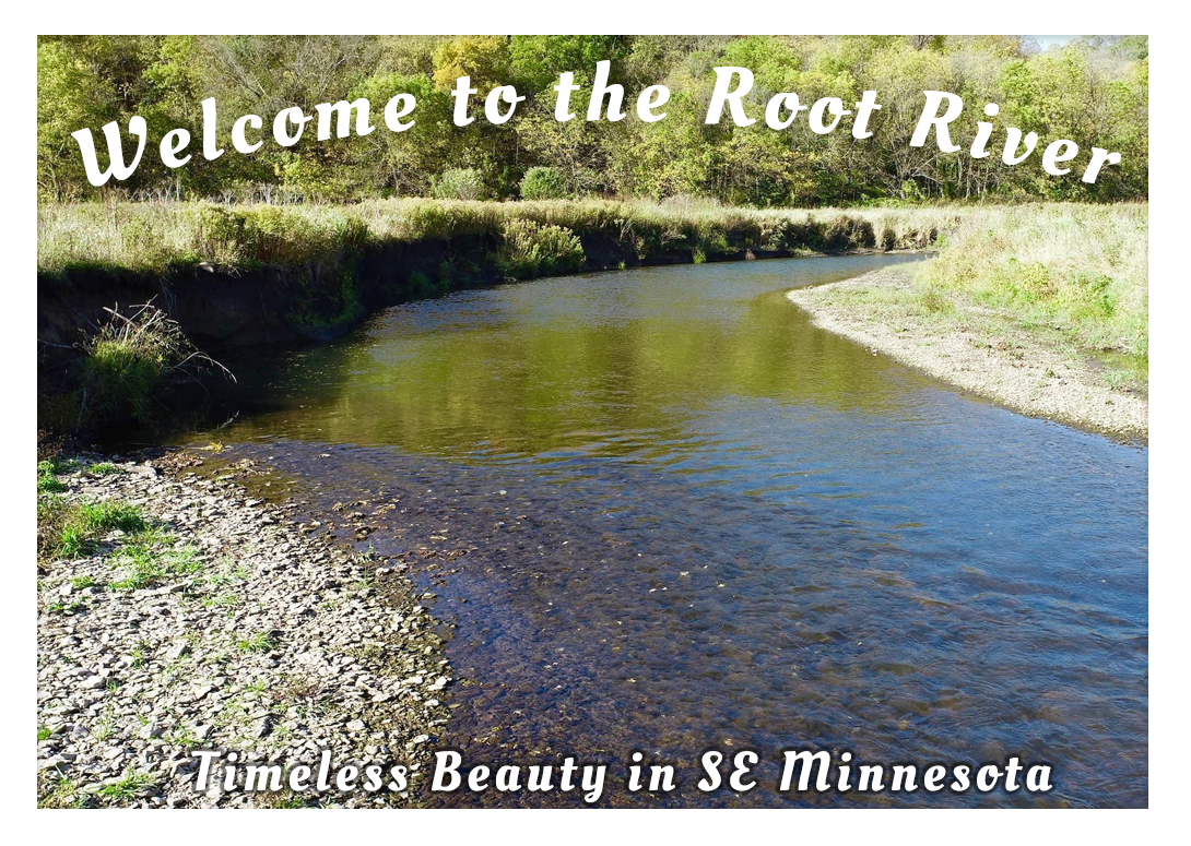 D36 isn't the only one wandering the Root water trail. This stunning area of Minnesota is just a little bit north of Decorah, Iowa